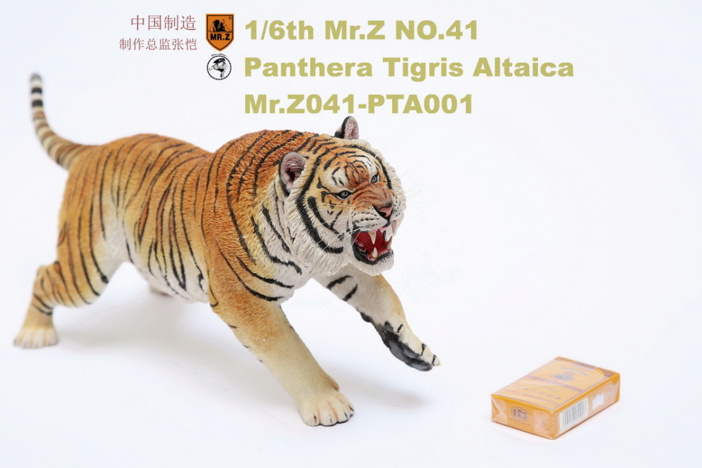 NEW PRODUCT: MR. Z: 1/6 Simulation Animal Model 41st - Siberian Tiger / Siberian Tiger [Planting Edition] - Full set of 3 colors 00045210