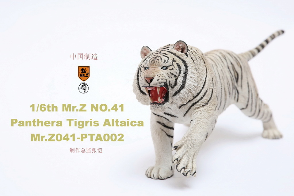 NEW PRODUCT: MR. Z: 1/6 Simulation Animal Model 41st - Siberian Tiger / Siberian Tiger [Planting Edition] - Full set of 3 colors 00051910
