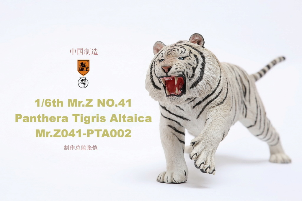 NEW PRODUCT: MR. Z: 1/6 Simulation Animal Model 41st - Siberian Tiger / Siberian Tiger [Planting Edition] - Full set of 3 colors 00051911