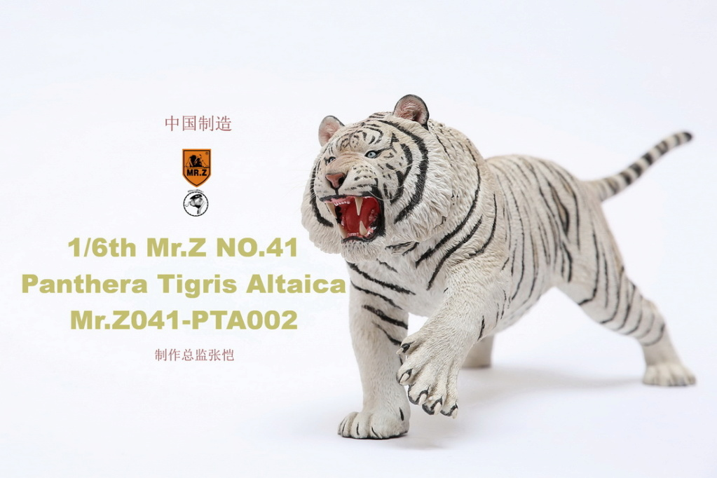 NEW PRODUCT: MR. Z: 1/6 Simulation Animal Model 41st - Siberian Tiger / Siberian Tiger [Planting Edition] - Full set of 3 colors 00051912