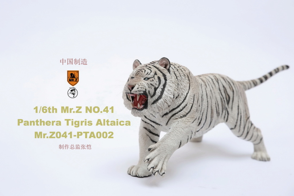 NEW PRODUCT: MR. Z: 1/6 Simulation Animal Model 41st - Siberian Tiger / Siberian Tiger [Planting Edition] - Full set of 3 colors 00052010