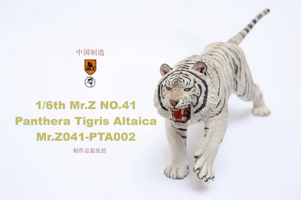 NEW PRODUCT: MR. Z: 1/6 Simulation Animal Model 41st - Siberian Tiger / Siberian Tiger [Planting Edition] - Full set of 3 colors 00052011