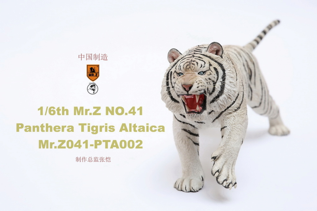 NEW PRODUCT: MR. Z: 1/6 Simulation Animal Model 41st - Siberian Tiger / Siberian Tiger [Planting Edition] - Full set of 3 colors 00052012
