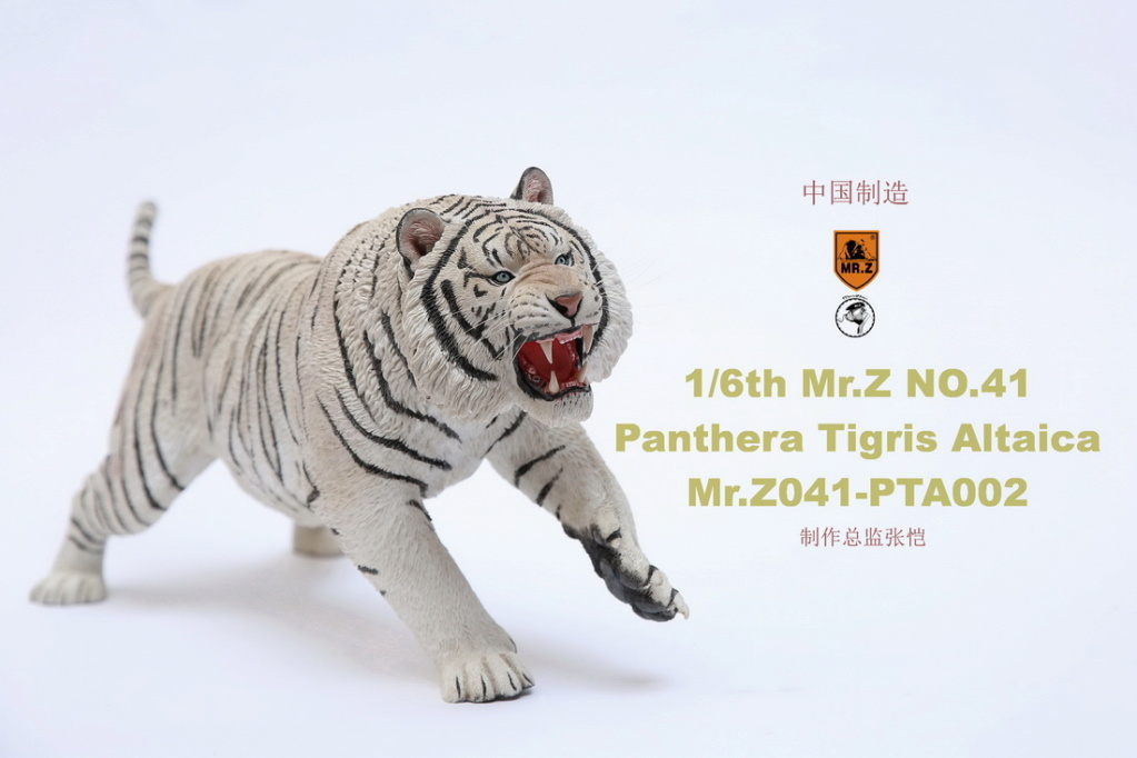 NEW PRODUCT: MR. Z: 1/6 Simulation Animal Model 41st - Siberian Tiger / Siberian Tiger [Planting Edition] - Full set of 3 colors 00052111