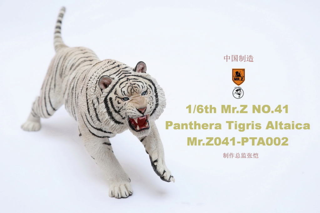 NEW PRODUCT: MR. Z: 1/6 Simulation Animal Model 41st - Siberian Tiger / Siberian Tiger [Planting Edition] - Full set of 3 colors 00052210