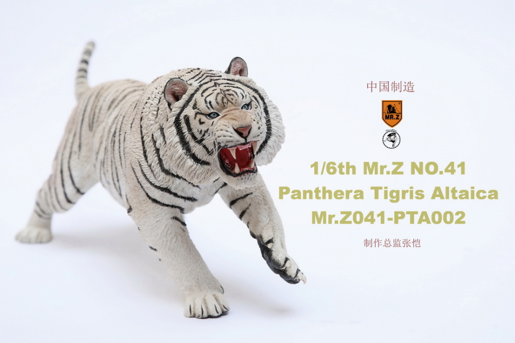 NEW PRODUCT: MR. Z: 1/6 Simulation Animal Model 41st - Siberian Tiger / Siberian Tiger [Planting Edition] - Full set of 3 colors 00052211