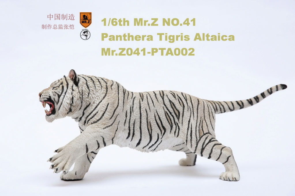 NEW PRODUCT: MR. Z: 1/6 Simulation Animal Model 41st - Siberian Tiger / Siberian Tiger [Planting Edition] - Full set of 3 colors 00052311