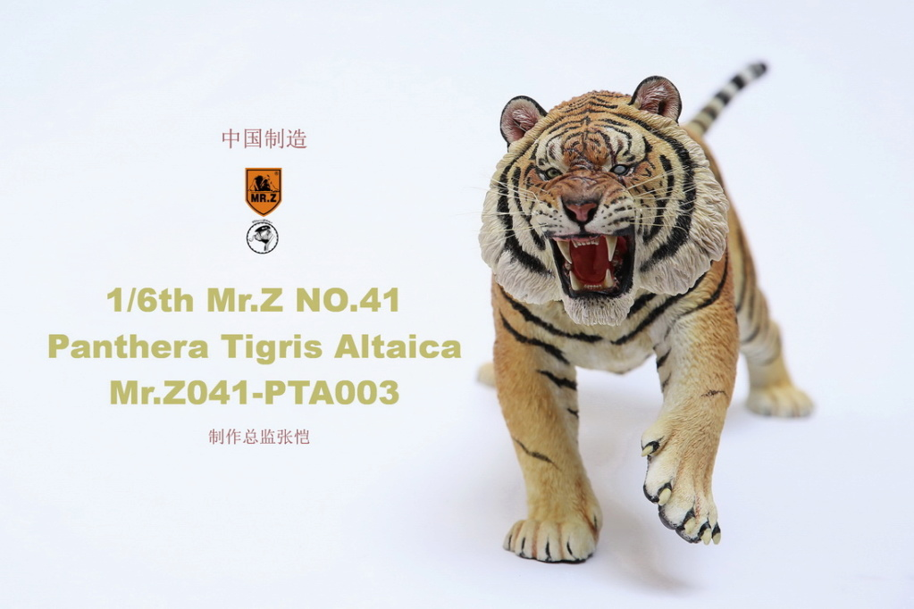 NEW PRODUCT: MR. Z: 1/6 Simulation Animal Model 41st - Siberian Tiger / Siberian Tiger [Planting Edition] - Full set of 3 colors 00064010