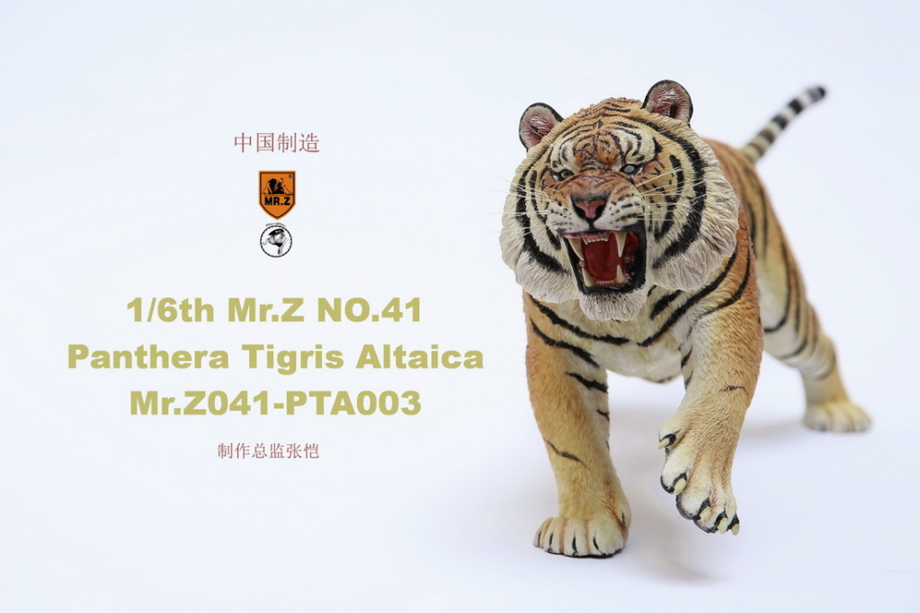 NEW PRODUCT: MR. Z: 1/6 Simulation Animal Model 41st - Siberian Tiger / Siberian Tiger [Planting Edition] - Full set of 3 colors 00064110