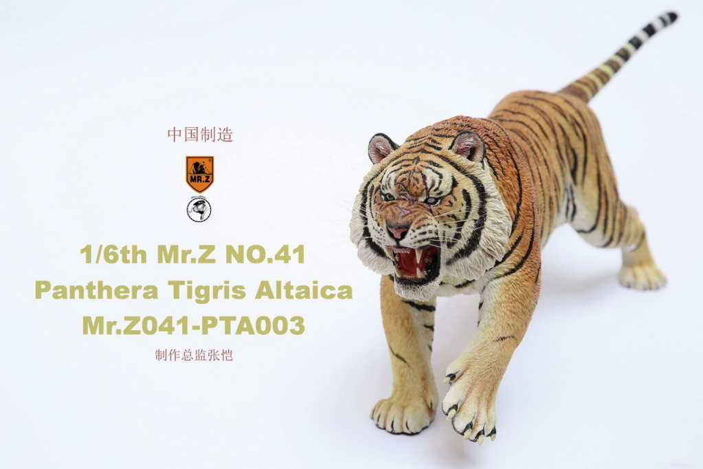 NEW PRODUCT: MR. Z: 1/6 Simulation Animal Model 41st - Siberian Tiger / Siberian Tiger [Planting Edition] - Full set of 3 colors 00064210