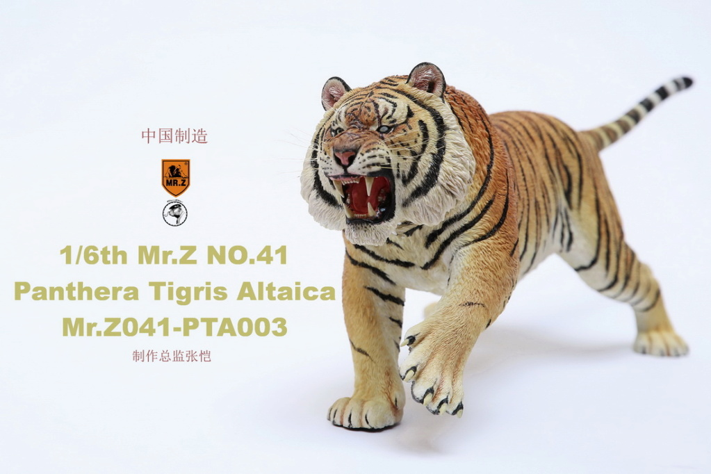 NEW PRODUCT: MR. Z: 1/6 Simulation Animal Model 41st - Siberian Tiger / Siberian Tiger [Planting Edition] - Full set of 3 colors 00064211