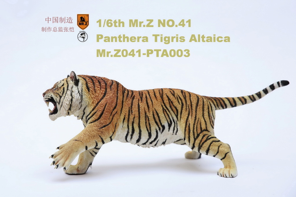 NEW PRODUCT: MR. Z: 1/6 Simulation Animal Model 41st - Siberian Tiger / Siberian Tiger [Planting Edition] - Full set of 3 colors 00064212