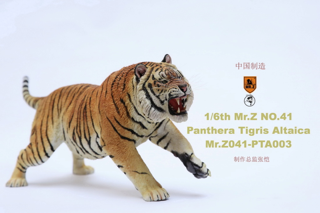 NEW PRODUCT: MR. Z: 1/6 Simulation Animal Model 41st - Siberian Tiger / Siberian Tiger [Planting Edition] - Full set of 3 colors 00064310