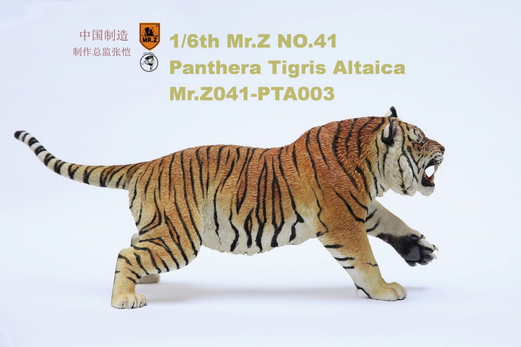 NEW PRODUCT: MR. Z: 1/6 Simulation Animal Model 41st - Siberian Tiger / Siberian Tiger [Planting Edition] - Full set of 3 colors 00064311