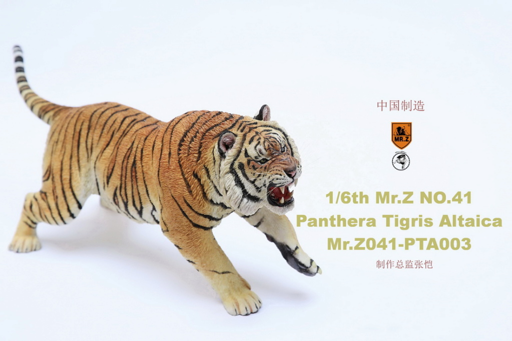 NEW PRODUCT: MR. Z: 1/6 Simulation Animal Model 41st - Siberian Tiger / Siberian Tiger [Planting Edition] - Full set of 3 colors 00064410