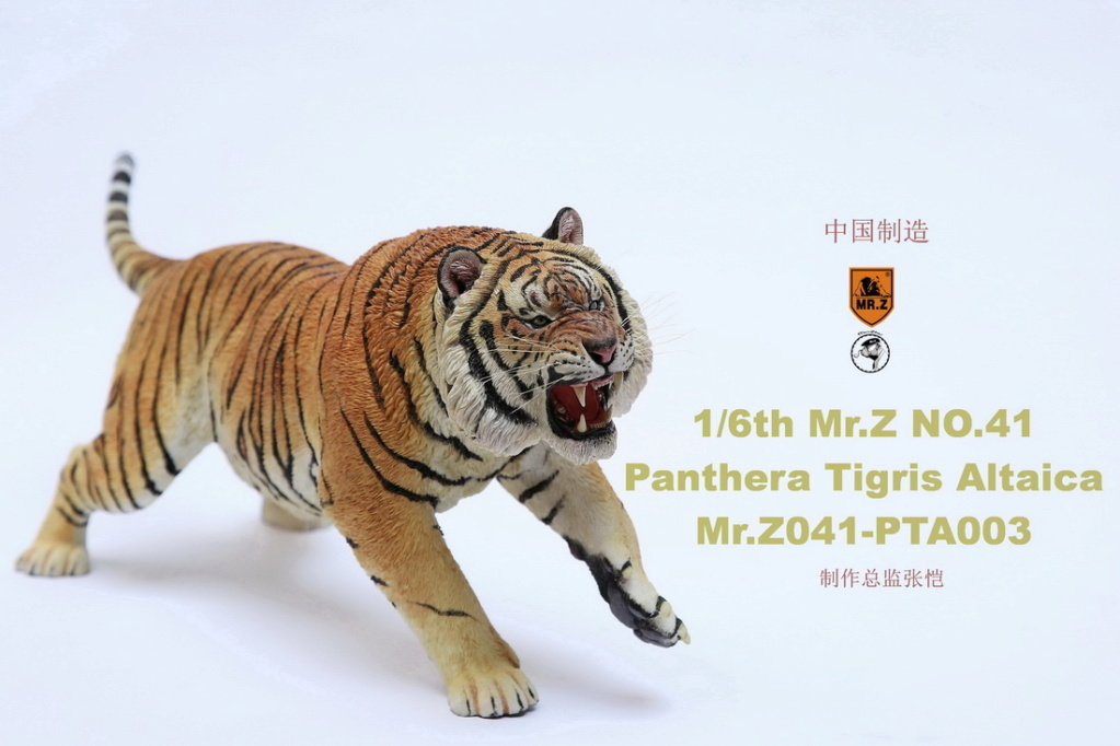 NEW PRODUCT: MR. Z: 1/6 Simulation Animal Model 41st - Siberian Tiger / Siberian Tiger [Planting Edition] - Full set of 3 colors 00064411