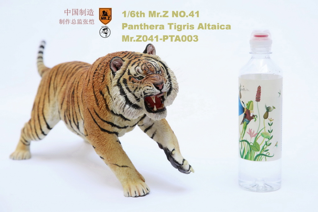NEW PRODUCT: MR. Z: 1/6 Simulation Animal Model 41st - Siberian Tiger / Siberian Tiger [Planting Edition] - Full set of 3 colors 00064612