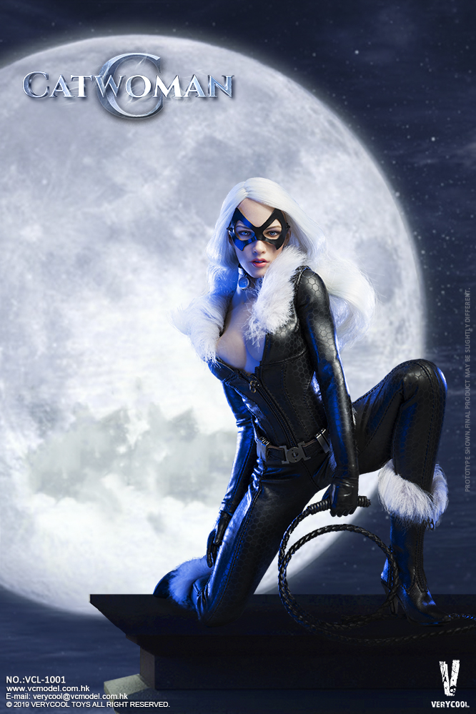 Topics tagged under catwoman on OneSixthFigures 09184010