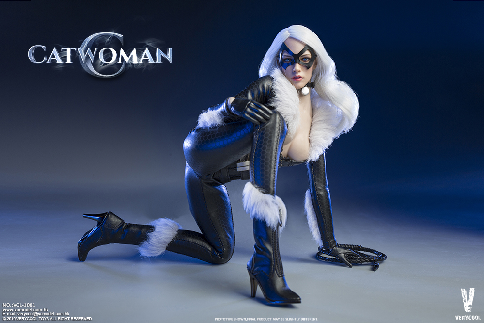 Topics tagged under catwoman on OneSixthFigures 09185010