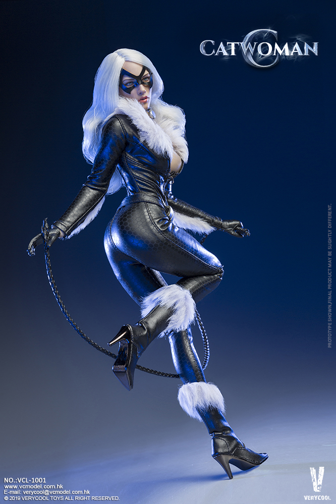 Topics tagged under catwoman on OneSixthFigures 09185210