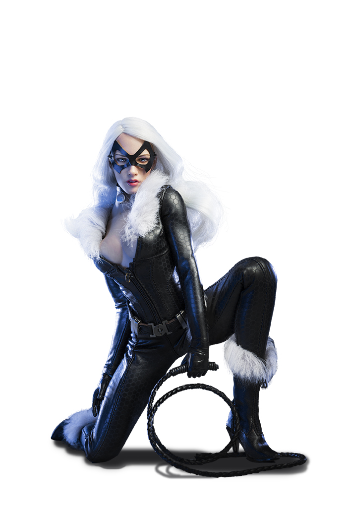 Topics tagged under catwoman on OneSixthFigures 09185411