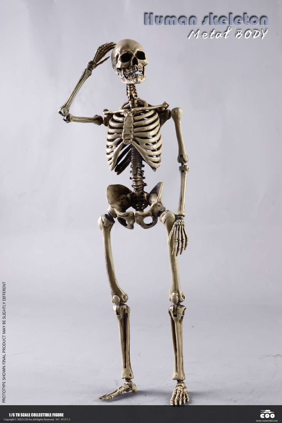 metal - NEW PRODUCT: COOMODEL: 1/6 Skeleton high movable body (all metal alloy material) BS011# 09572810