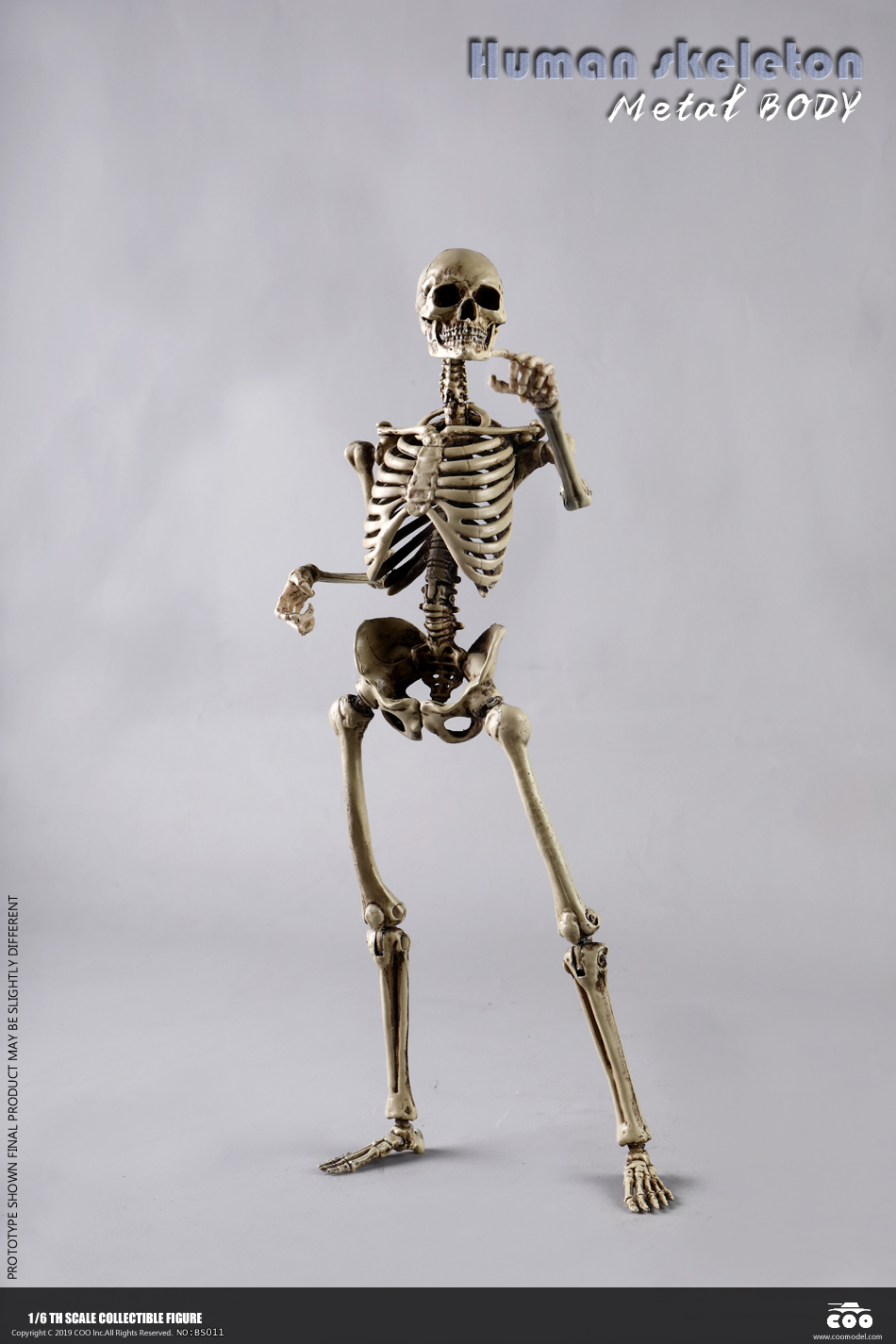 metal - NEW PRODUCT: COOMODEL: 1/6 Skeleton high movable body (all metal alloy material) BS011# 09573010
