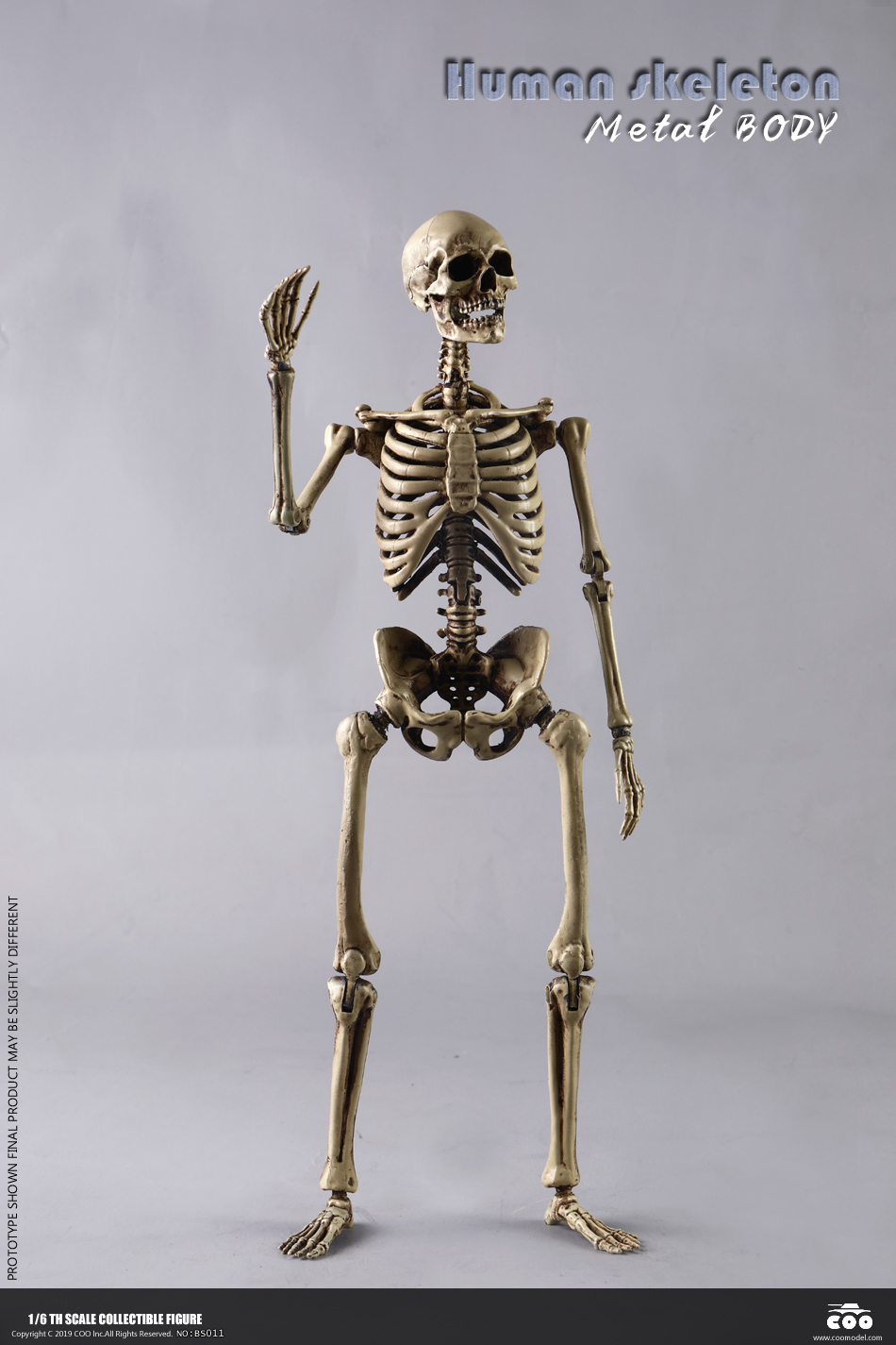 metal - NEW PRODUCT: COOMODEL: 1/6 Skeleton high movable body (all metal alloy material) BS011# 09573111