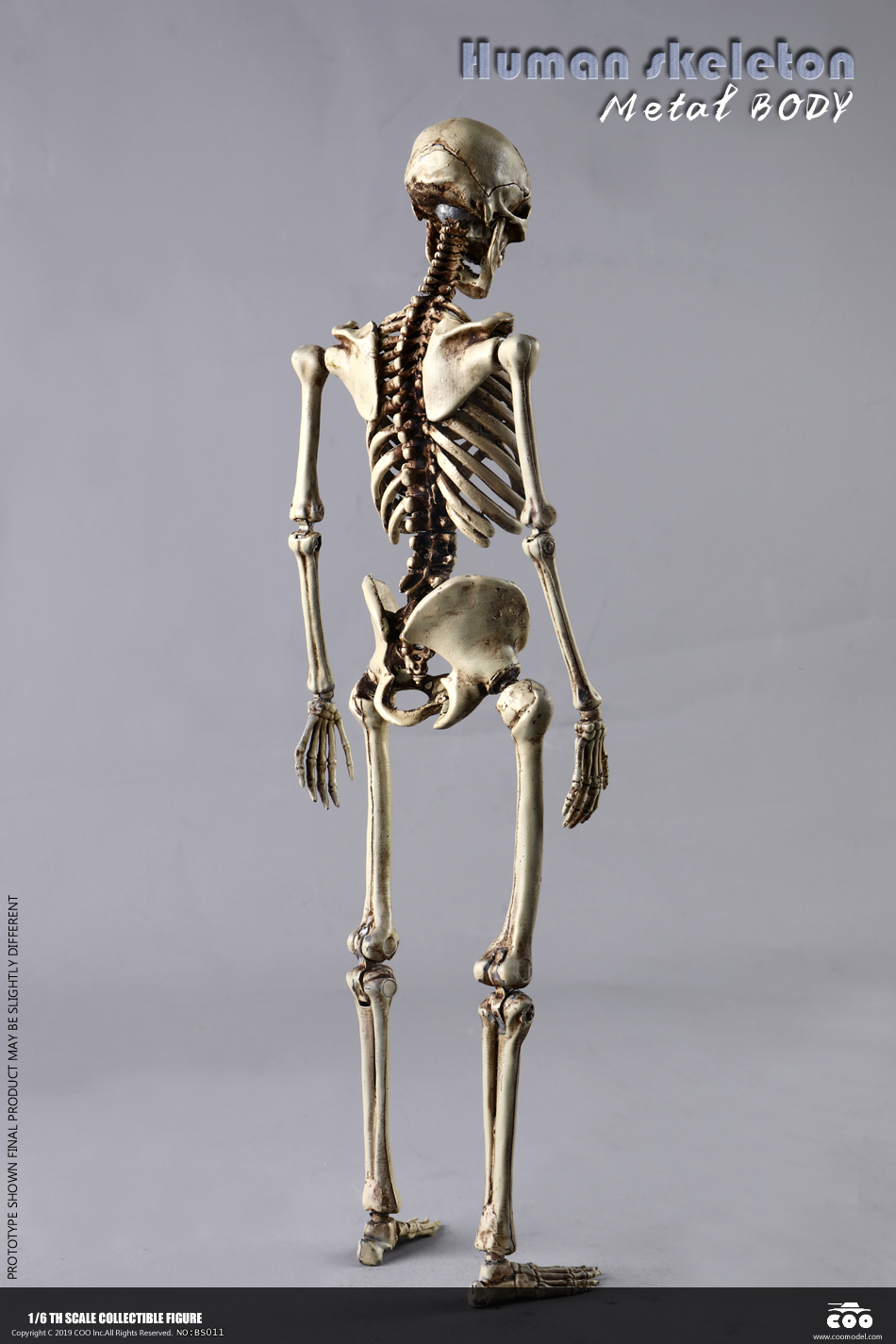 metal - NEW PRODUCT: COOMODEL: 1/6 Skeleton high movable body (all metal alloy material) BS011# 09573310