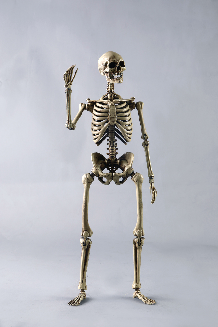 metal - NEW PRODUCT: COOMODEL: 1/6 Skeleton high movable body (all metal alloy material) BS011# 09573511