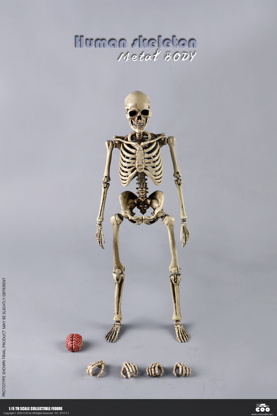 metal - NEW PRODUCT: COOMODEL: 1/6 Skeleton high movable body (all metal alloy material) BS011# 09573610