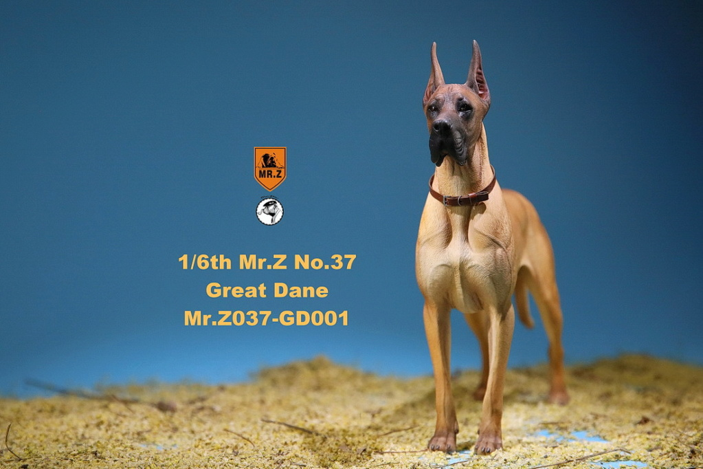 NEW PRODUCT: Mr.Z: simulation animal 37th-1/6 ratio German Great Dane German Great Dane - full set of 6 colors 10065310