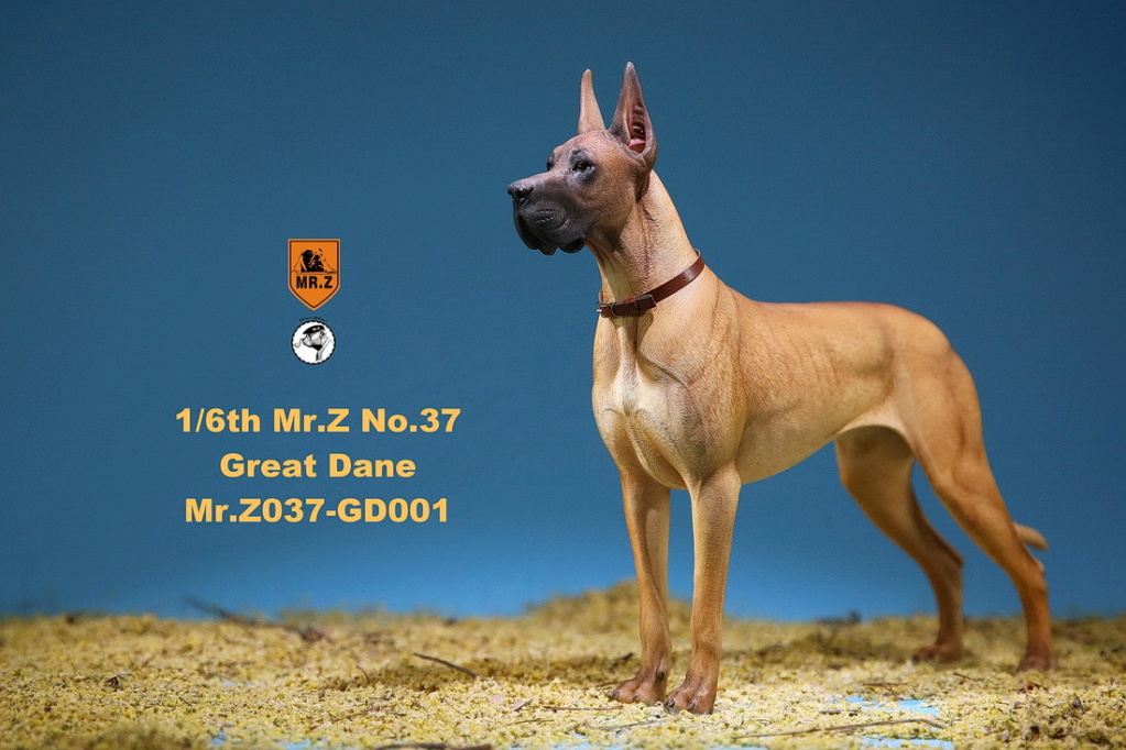 NEW PRODUCT: Mr.Z: simulation animal 37th-1/6 ratio German Great Dane German Great Dane - full set of 6 colors 10065510