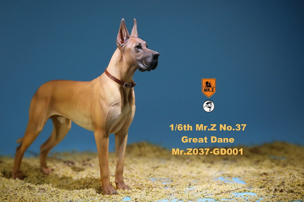 NEW PRODUCT: Mr.Z: simulation animal 37th-1/6 ratio German Great Dane German Great Dane - full set of 6 colors 10065711