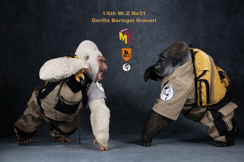 NEW PRODUCT: Mr.Z new product: 1/6 simulation animal model 31st bomb - African lowland gorilla (all 2 heads can be changed to upper limbs) 10070110