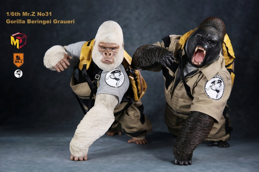 NEW PRODUCT: Mr.Z new product: 1/6 simulation animal model 31st bomb - African lowland gorilla (all 2 heads can be changed to upper limbs) 10070210