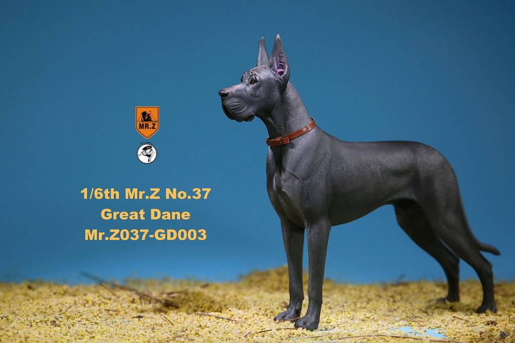 NEW PRODUCT: Mr.Z: simulation animal 37th-1/6 ratio German Great Dane German Great Dane - full set of 6 colors 10091510