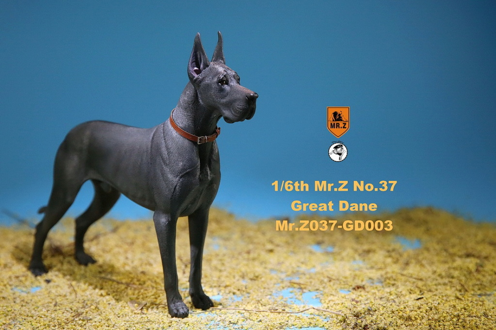 NEW PRODUCT: Mr.Z: simulation animal 37th-1/6 ratio German Great Dane German Great Dane - full set of 6 colors 10091611