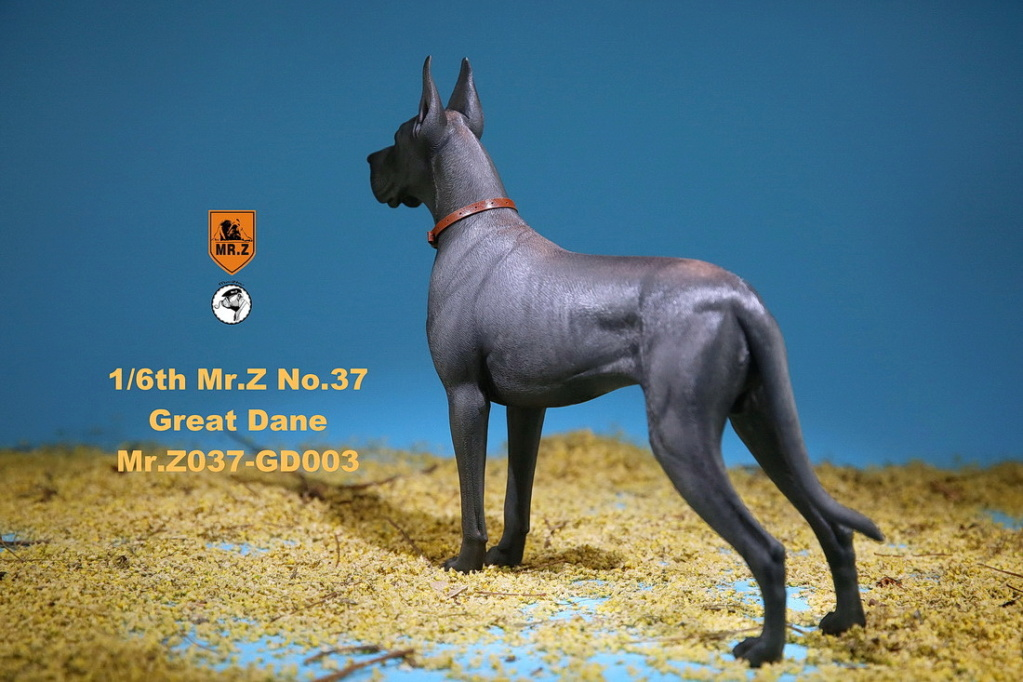 NEW PRODUCT: Mr.Z: simulation animal 37th-1/6 ratio German Great Dane German Great Dane - full set of 6 colors 10091710
