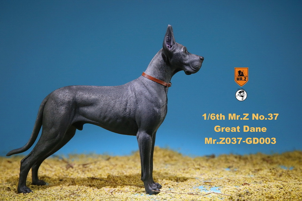 NEW PRODUCT: Mr.Z: simulation animal 37th-1/6 ratio German Great Dane German Great Dane - full set of 6 colors 10091711