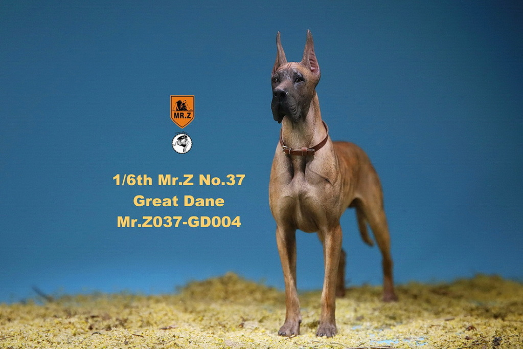 NEW PRODUCT: Mr.Z: simulation animal 37th-1/6 ratio German Great Dane German Great Dane - full set of 6 colors 10094910