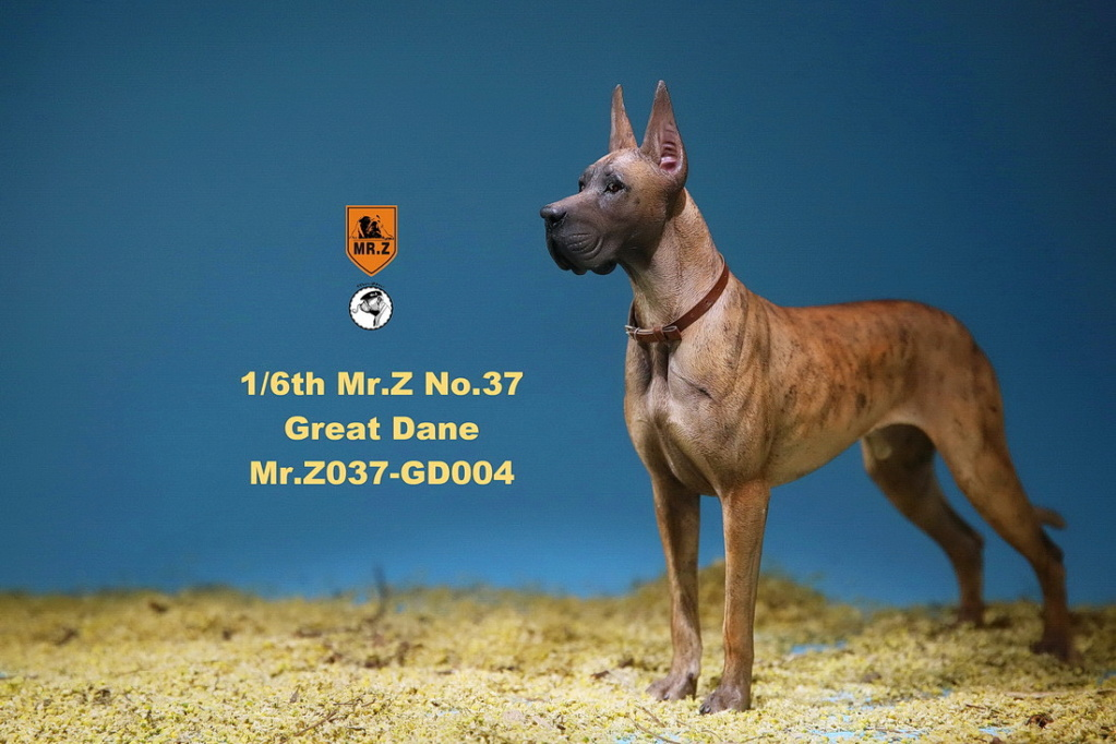 NEW PRODUCT: Mr.Z: simulation animal 37th-1/6 ratio German Great Dane German Great Dane - full set of 6 colors 10095011