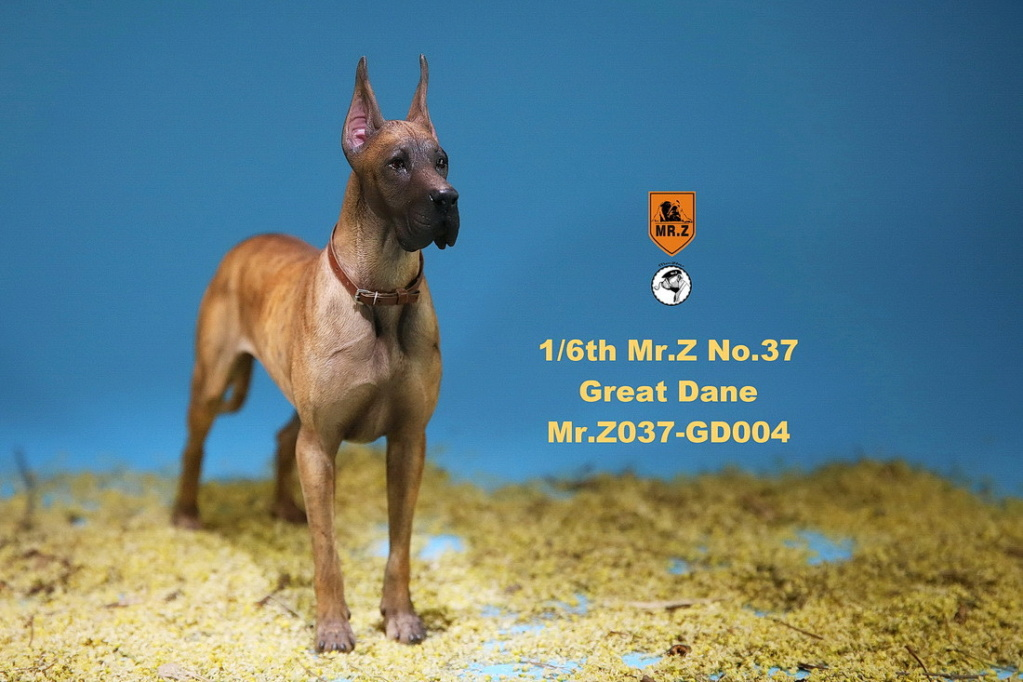 NEW PRODUCT: Mr.Z: simulation animal 37th-1/6 ratio German Great Dane German Great Dane - full set of 6 colors 10095110