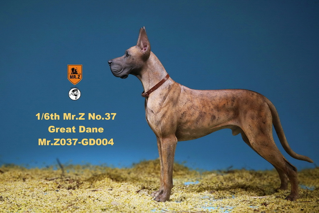 NEW PRODUCT: Mr.Z: simulation animal 37th-1/6 ratio German Great Dane German Great Dane - full set of 6 colors 10095111