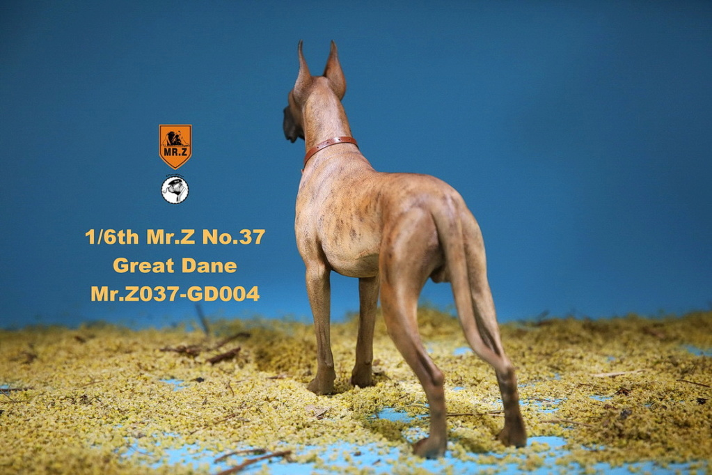 NEW PRODUCT: Mr.Z: simulation animal 37th-1/6 ratio German Great Dane German Great Dane - full set of 6 colors 10095211