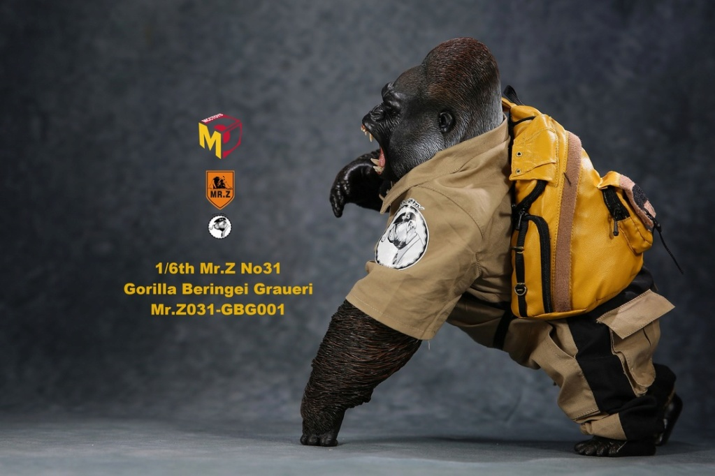 NEW PRODUCT: Mr.Z new product: 1/6 simulation animal model 31st bomb - African lowland gorilla (all 2 heads can be changed to upper limbs) 10102030