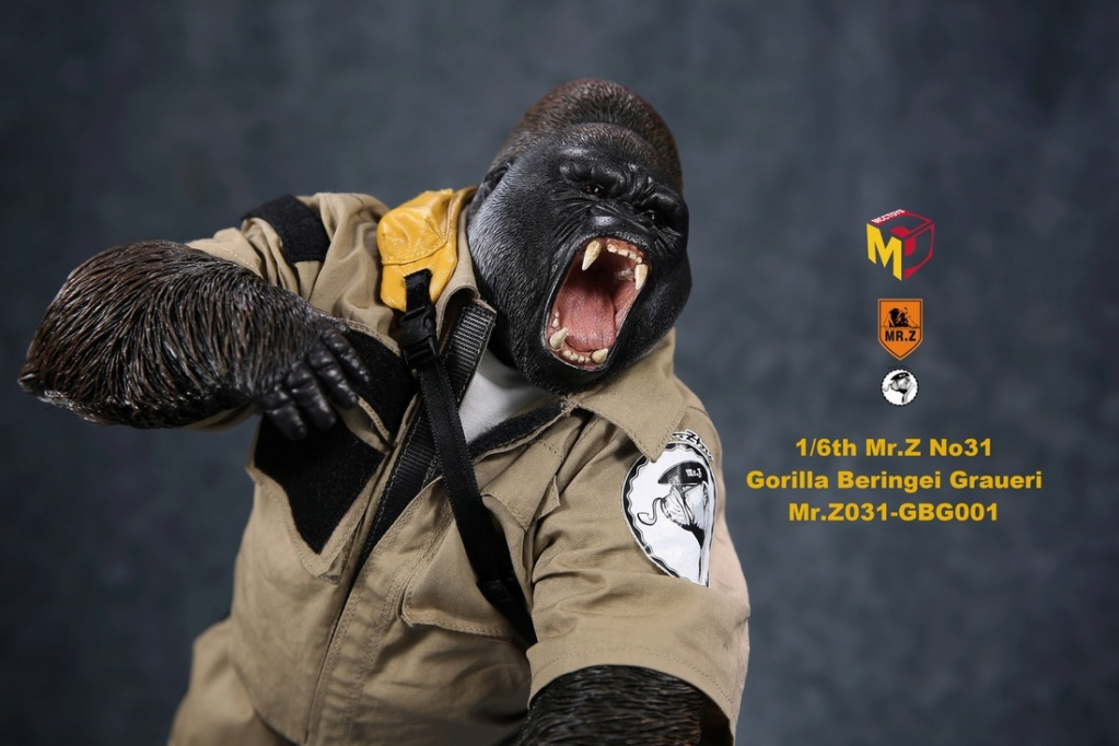 NEW PRODUCT: Mr.Z new product: 1/6 simulation animal model 31st bomb - African lowland gorilla (all 2 heads can be changed to upper limbs) 10102210