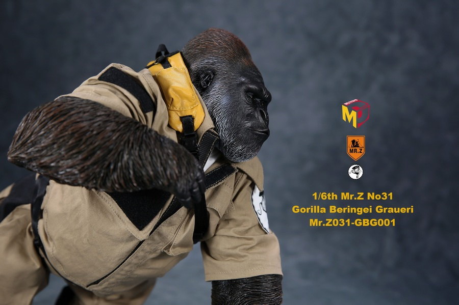 NEW PRODUCT: Mr.Z new product: 1/6 simulation animal model 31st bomb - African lowland gorilla (all 2 heads can be changed to upper limbs) 10102310