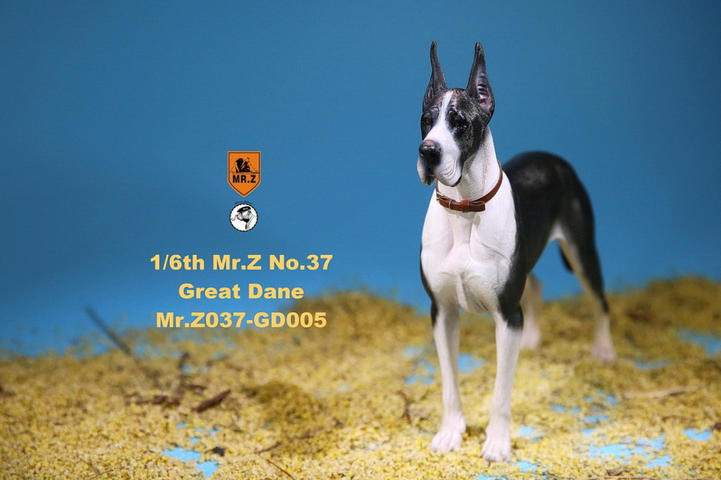 NEW PRODUCT: Mr.Z: simulation animal 37th-1/6 ratio German Great Dane German Great Dane - full set of 6 colors 10102711