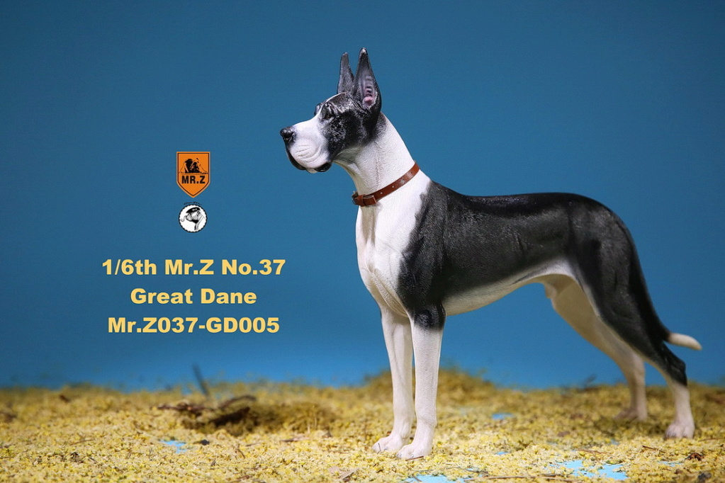 NEW PRODUCT: Mr.Z: simulation animal 37th-1/6 ratio German Great Dane German Great Dane - full set of 6 colors 10102813